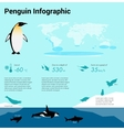 Penguins infographic Emperor penguin Flat design vector image