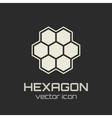 Hexagon icon vector image