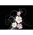 Wild rose blossoms vector image vector image