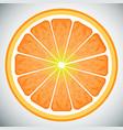 piece of orange high quality vector image