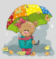 cute cartoon bear with vector image