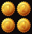 gold rank medallion vector image
