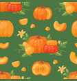 Pumpkin vegetable organic healthy autumn vector image