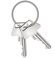 Keys isolated on white vector image vector image