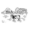 cow at meadow barn at countryside organic food vector image