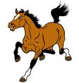 running cartoon horse vector image vector image
