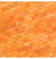Brick Wall Orange Stone Background vector image