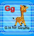 flashcard letter g is for giraffe vector image