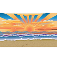 Sunset on tropical beach vector image