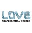 Words of love for professional football Sports vector image