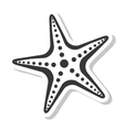 starfish sea isolated icon vector image