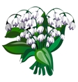 Delicate bouquet of white bells flowers vector image