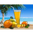 glass of juice and fruit on the beach vector image