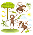 funny monkeys friends with tree leaves sun clouds vector image