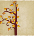 autumn tree old background vector image