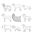 Collection of breeds dog in line vector image