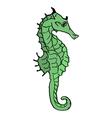 seahorse design vector image