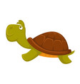 turtle cartoon pet flat icon vector image