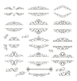 Swirls Vintage Design Elements vector image