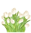 Tulips decorative background EPS 10 vector image vector image