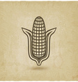corn symbol old background vector image