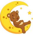 the bear sleep on the moon vector image