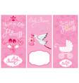 baby girl shower set party decoration scrapbook vector image