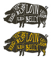 pork meat cuts vector image