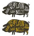 pork meat cuts vector image
