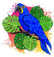 Beautiful summer drawing with parrot palm vector image