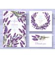 lavender invitations set vector image