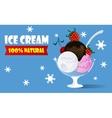 Ice cream watered chocolate sauce vector image
