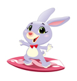 Bunny rabbit with surf vector image