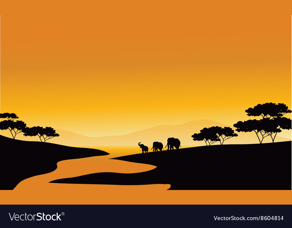 Family elephant of silhouette in the river vector