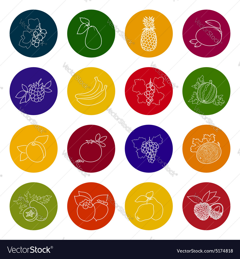 Set fruit icons vector