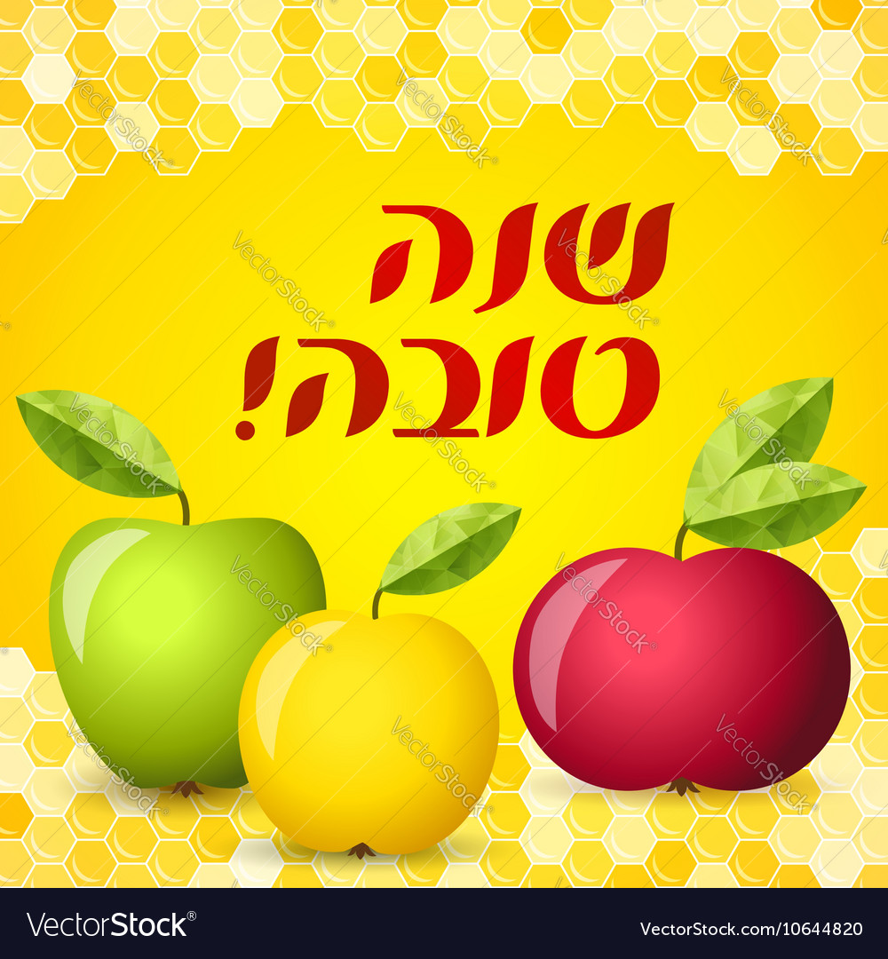 Rosh hashana card  apple and honey vector