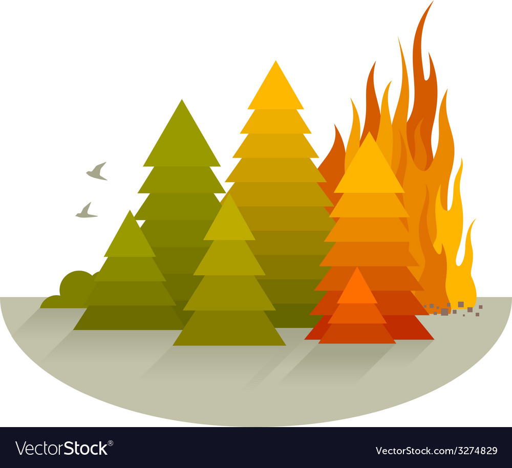 Wildfire disaster concept vector