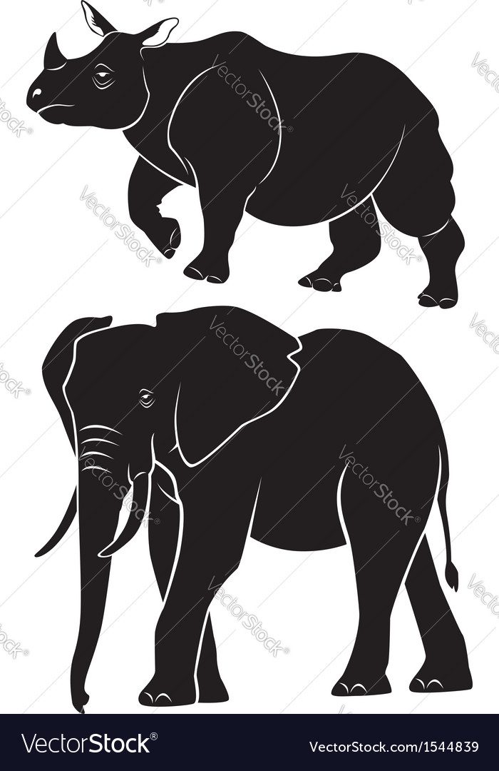 Animal rhino elephant vector