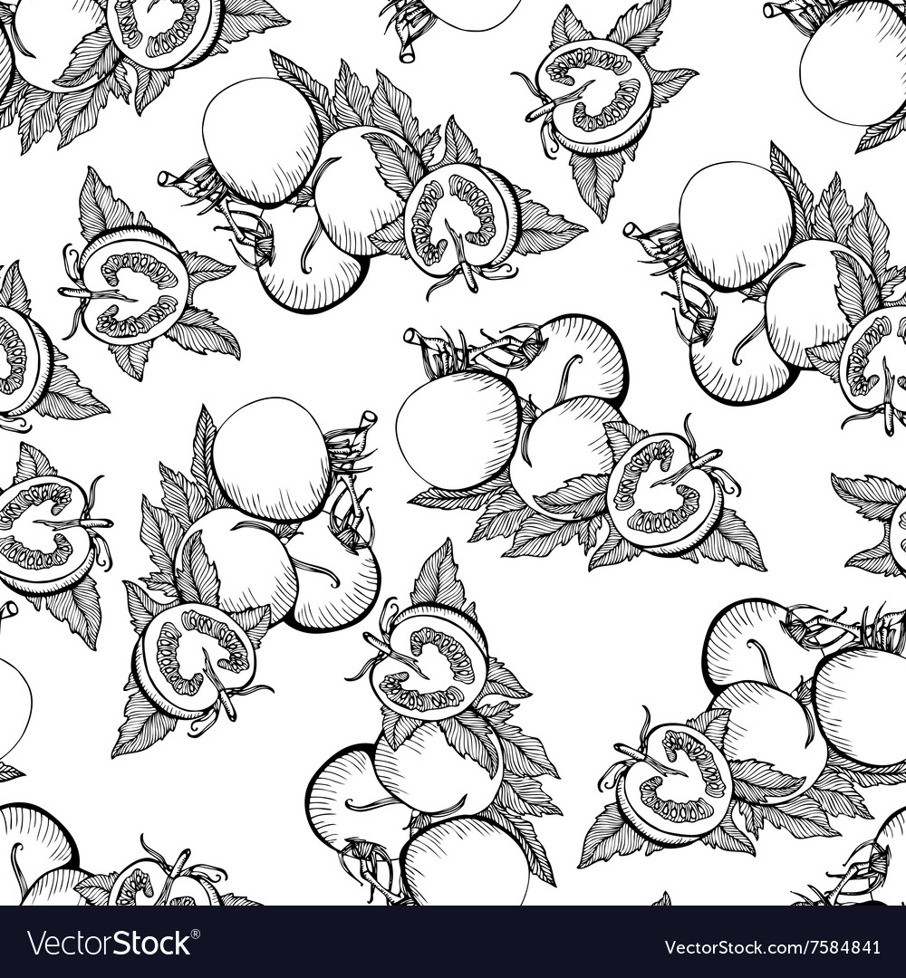 Seamless monochrome pattern of tomatoes vector