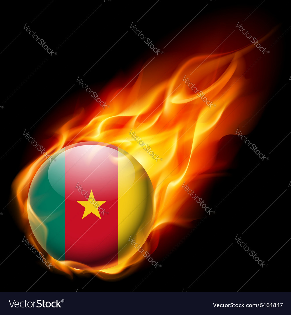 Round glossy icon of cameroon vector