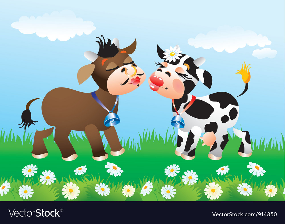 Cartoon kissing cows in love vector