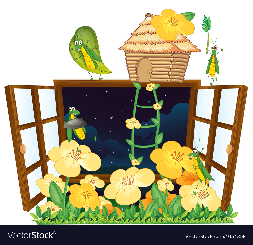 Grasshopper bird house and window vector