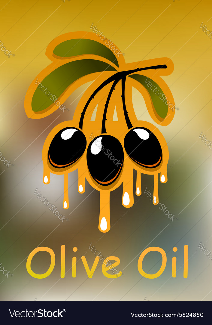 Olive branch and golden oil vector