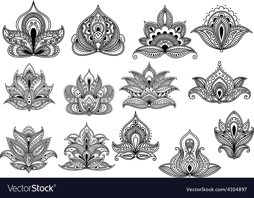 Large set of ornate floral paisley motifs vector