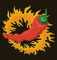 pepper flame vector image vector image