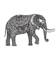 Stylized fantasy patterned elephant Hand drawn vector image