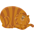 fat cat character cartoon vector image