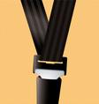Safety seat belt vector image