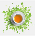 black tea cup  concept with vector image