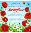 spring flowers poster springtime greetings vector image vector image